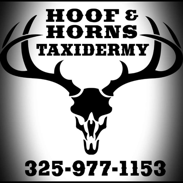 Hoof and Horns Taxidermy: Munday, TX