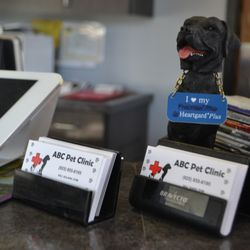 Photo Of ABC Pet Clinic