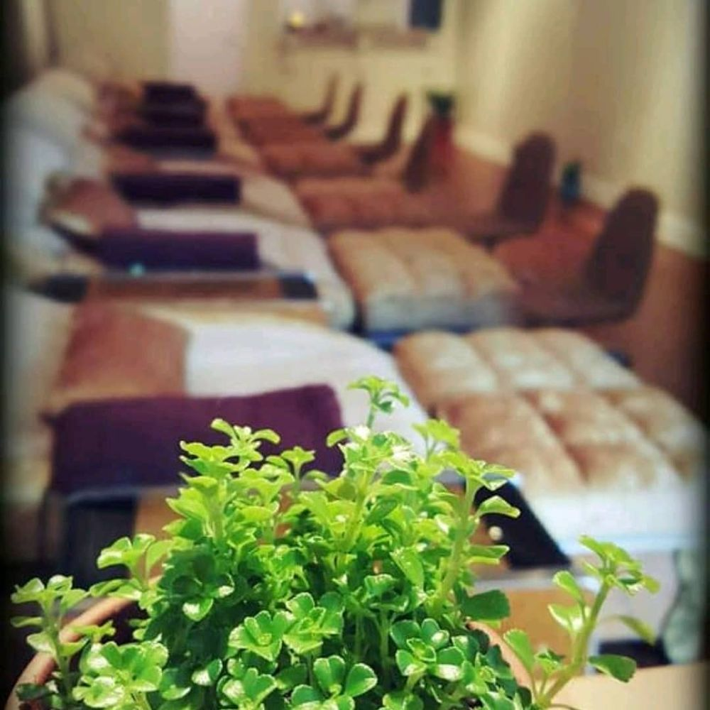Healing Hand Spa: 6306 Northern Blvd, East Norwich, NY
