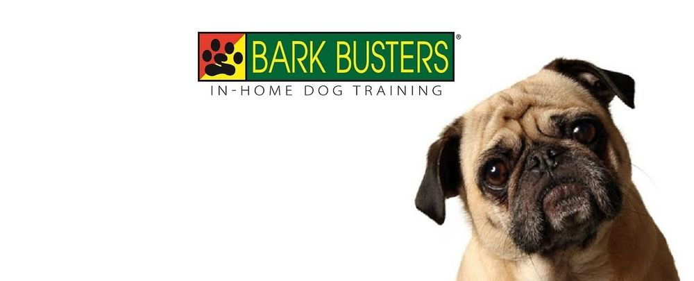 Bark Busters In Home Dog Training Brampton On