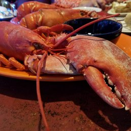 Photos for Bay Haven Two Lobster Pound - Yelp