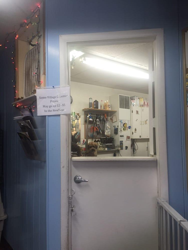 Sarah Vanicek's Village Grooming: 513 Main St E, Girard, PA