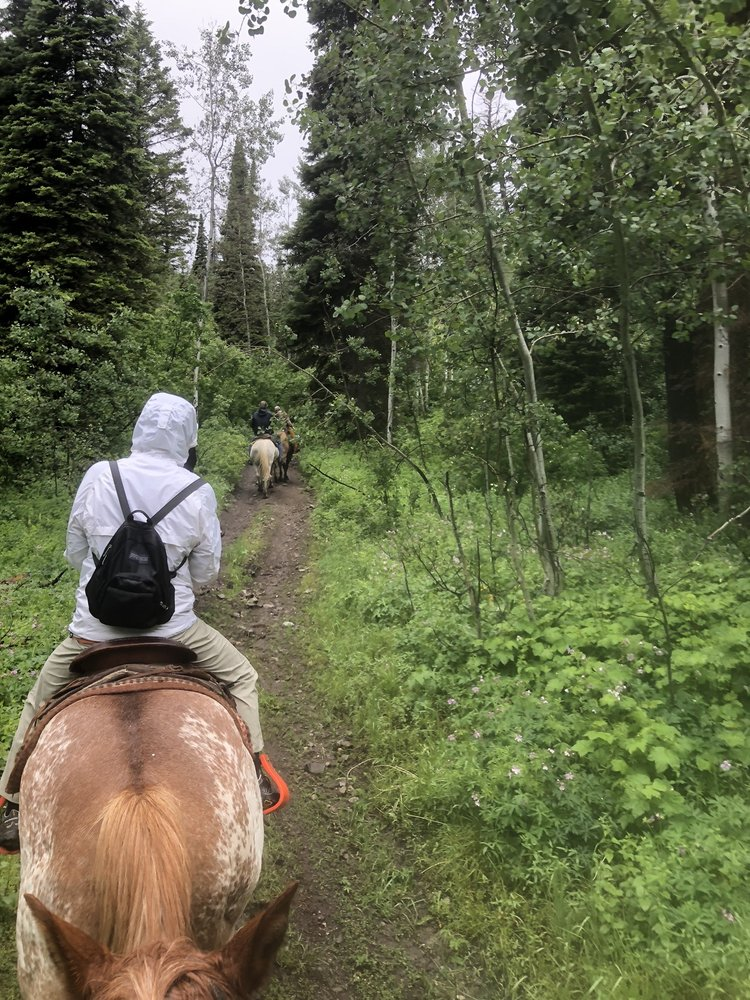 Swan Valley Outfitters: 3411 US-26, Swan Valley, ID
