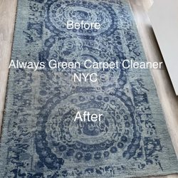 Always Green Carpet Cleaner 120 Photos 74 Reviews
