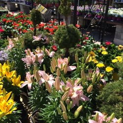 photo of lowes home improvement oaks pa united states - Lowes Garden Supplies