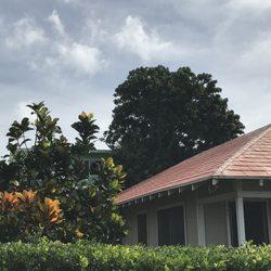 Ohana Tree Services 43 Photos 32 Reviews Tree Services 3852b