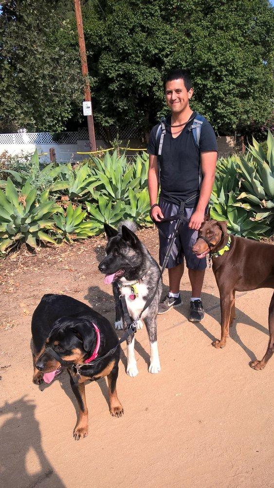 Professional dog walking service hundesitter artesia for Professional dog walking service