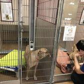 San Jose Animal Care Center - 260 Photos & 314 Reviews - Animal