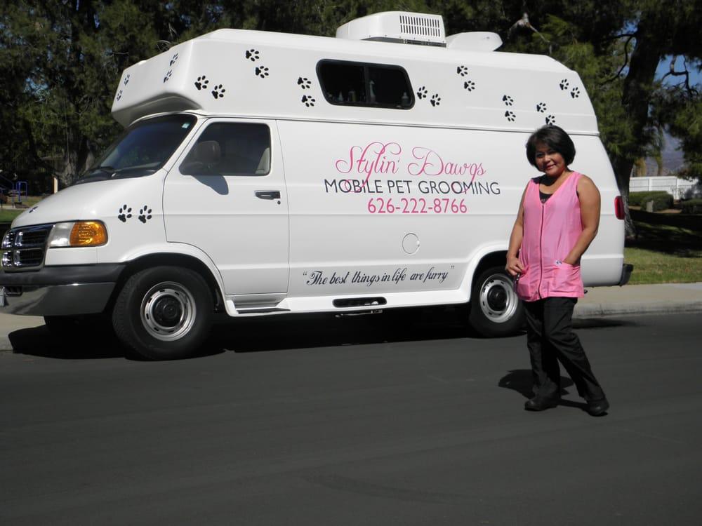 yelp mobile dog grooming