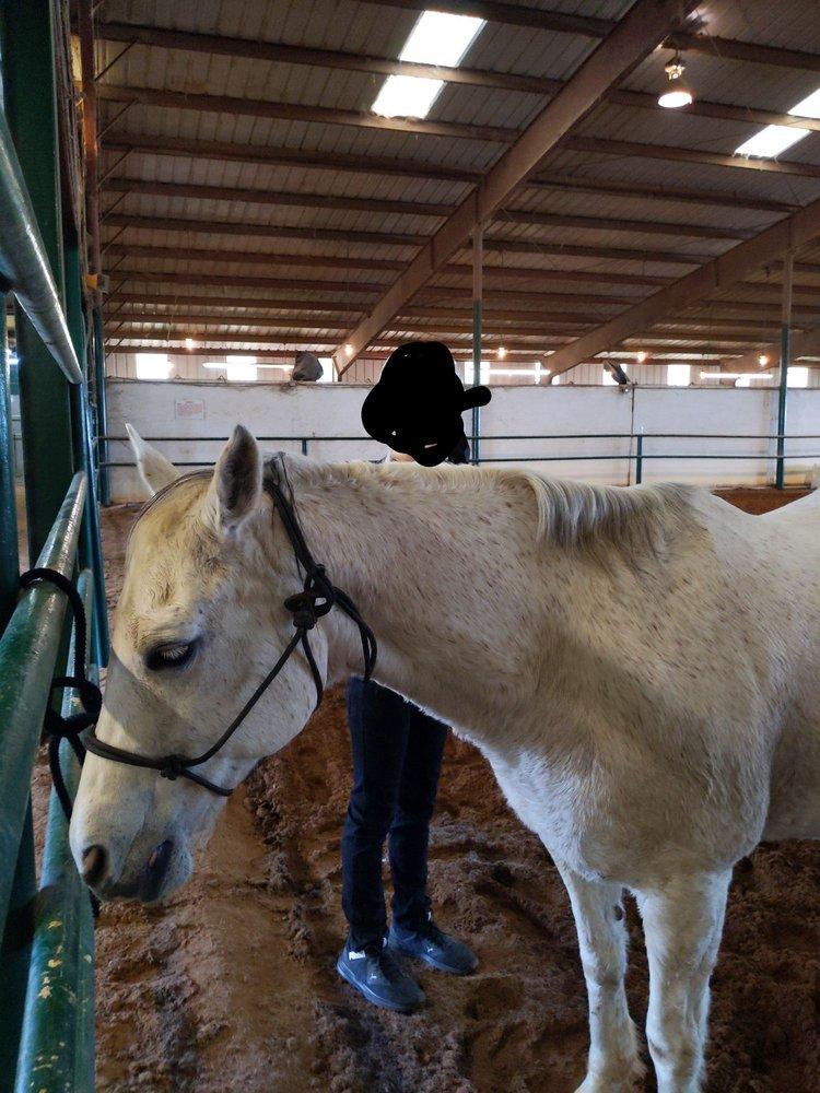 Hidden Springs Equestrian Center: 5890 Fm 1516 N, Converse, TX