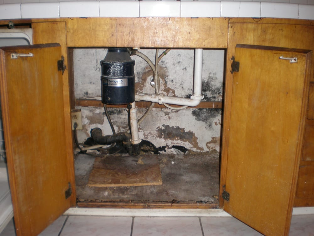 Home Mold Inspection And Mold Removal Damage Restoration