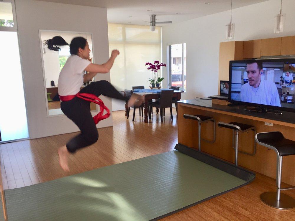 School Of Martial Arts-West LA