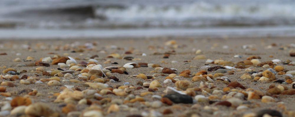 Ideal Beach: Bayside Pkwy E, Keansburg, NJ