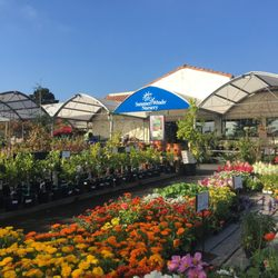 Photo Of Summerwinds Nursery Cupertino Ca United States Incredible Selection