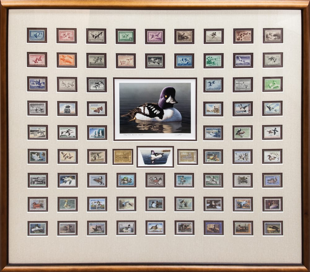 Federal Duck Stamp Collection We Are The Premier Framer
