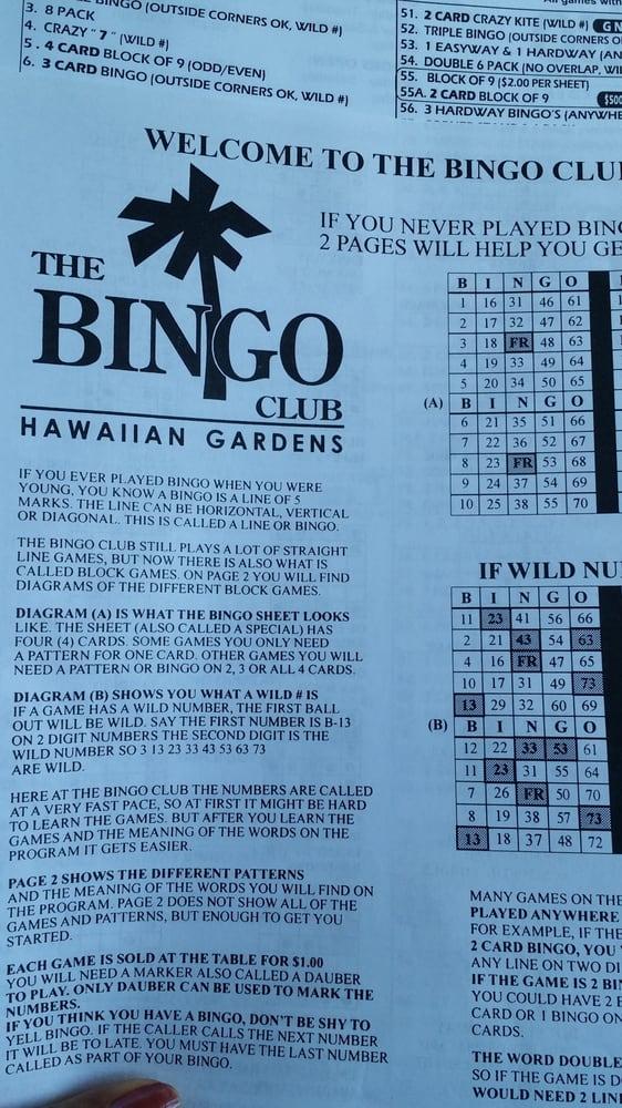Bingo Instructions Yelp