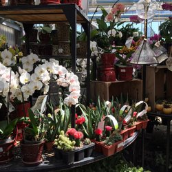 Photo Of Vanwilgen S Garden Center North Branford Ct United States