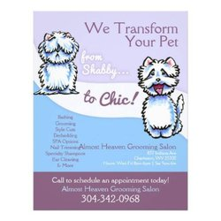 Almost heaven grooming salon 27 photos pet groomers for 712 salon charleston wv reviews