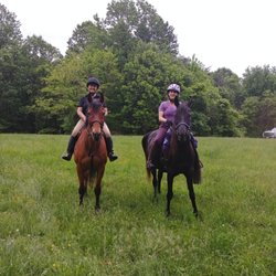 Potomac Riverside Stables - 71 Photos - Horseback Riding