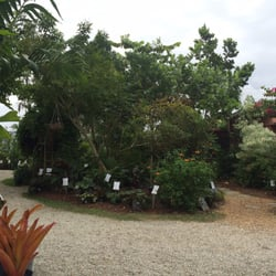 Photo Of Riverland Nursery Fort Myers Fl United States