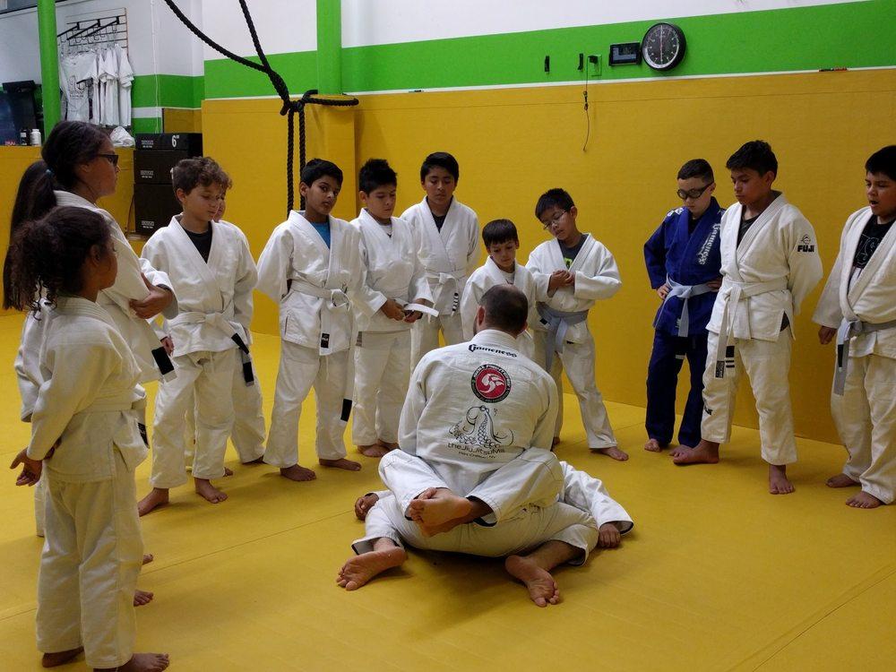 The Jiu Jitsu Mill