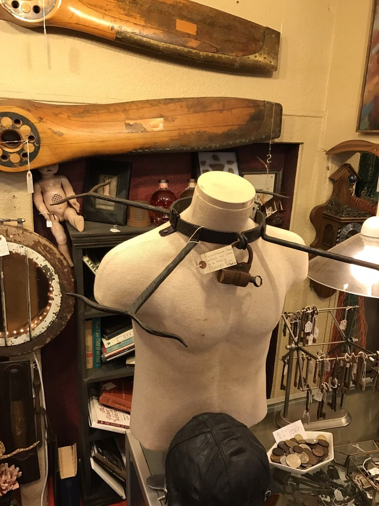 Oddities and Antiques: 1764 Clearwater Largo Rd N, Clearwater, FL