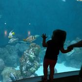 Photo Of National Mississippi River Museum Aquarium Dubuque Ia United States
