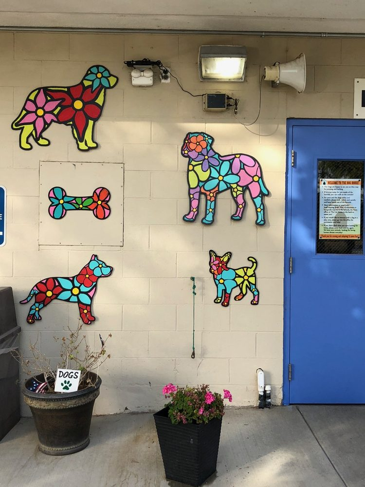 Castaic Animal Care Center: 31044 Charlie Canyon Rd, Castaic, CA