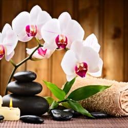 orchide thaimassage dansk sex