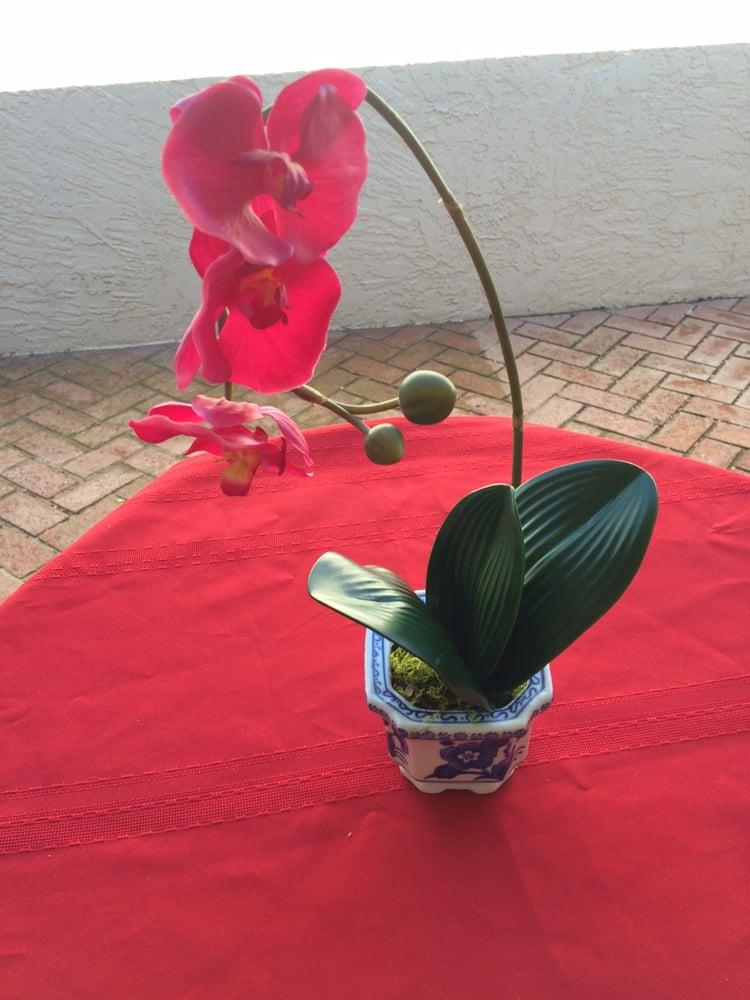 Orchid Original Design: Chama, NM