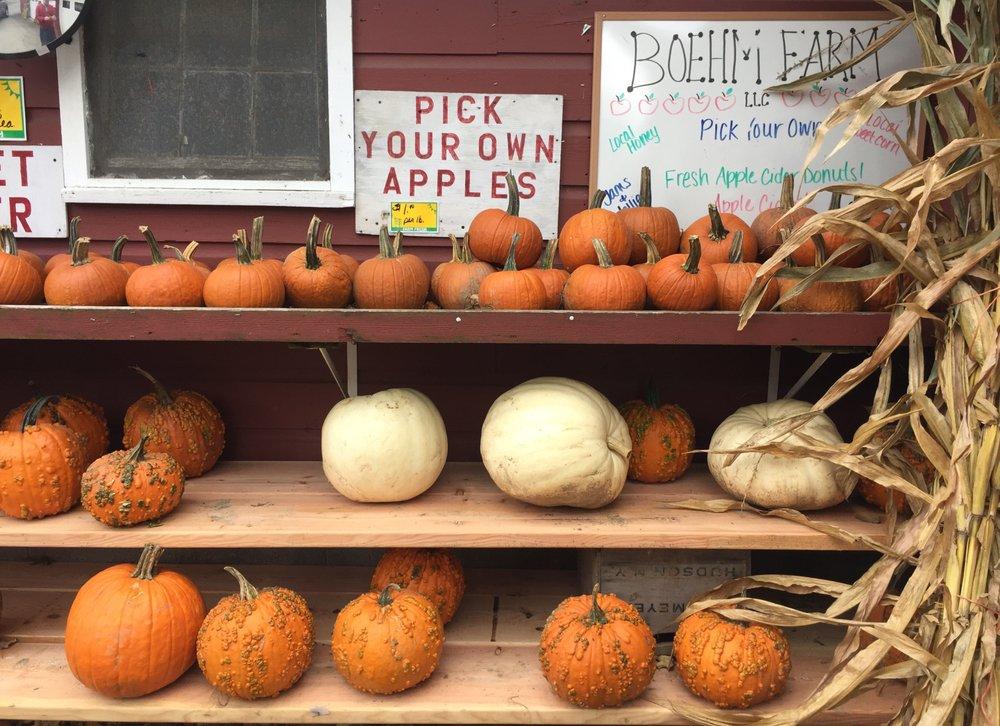 Boehm Farm: 233 County Route 26, Climax, NY