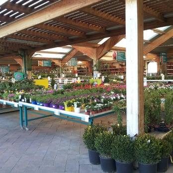 Verdecora majadahonda 32 fotos viveros y jardiner a for Verdecora madrid