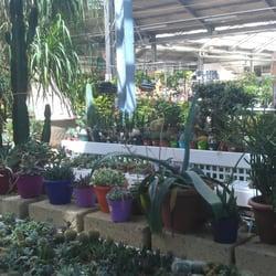 Centro Di Giardinaggio San Fruttuoso Gärtnerei Gartencenter