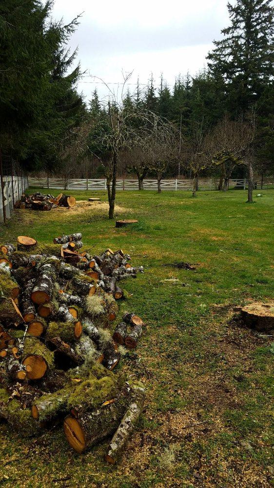 Judd Tree Service: 3972 Wishkah Rd, Aberdeen, WA