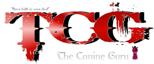 The canine guru addestramento di animali domestici for Piani domestici su ordinazione arizona