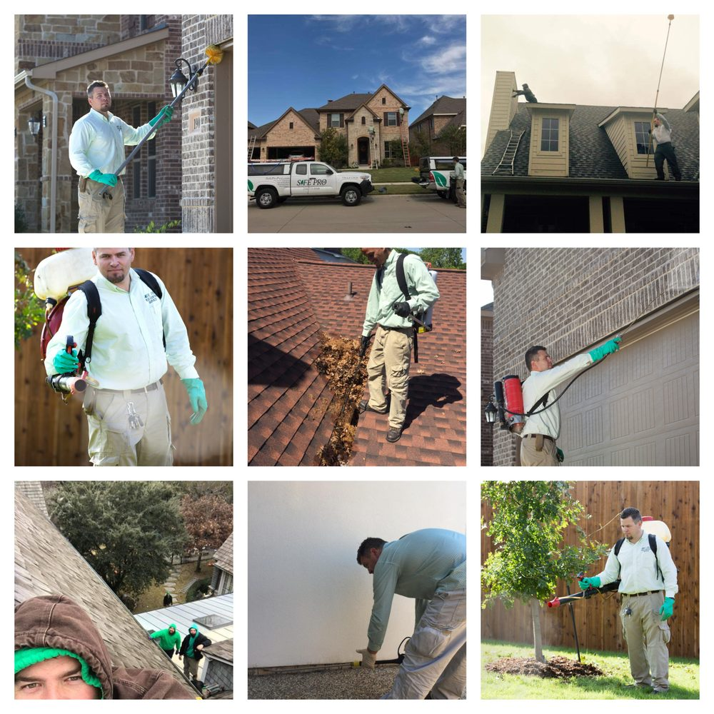 Safe Pro Pest Control: 122 Rose Ln, Frisco, TX