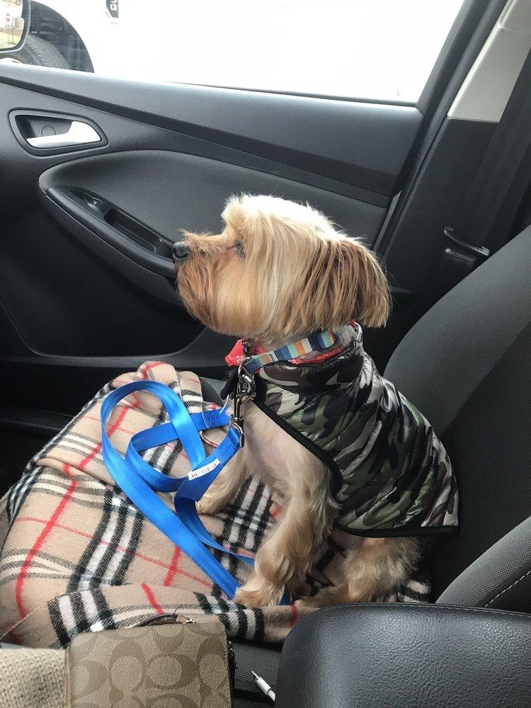 Somerset Dog Grooming: 30110 Southfield Rd, Southfield, MI