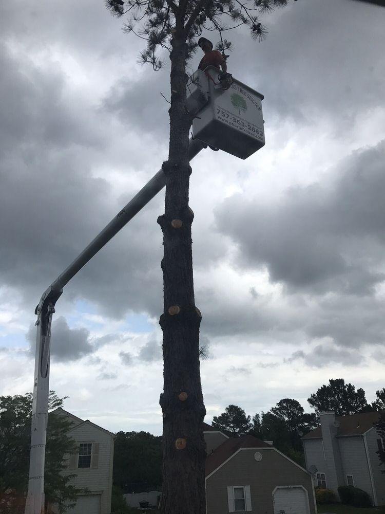 Poor Folks Tree Service