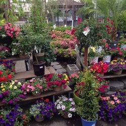 Morristown Agway 11 Photos 10 Reviews Nurseries Gardening