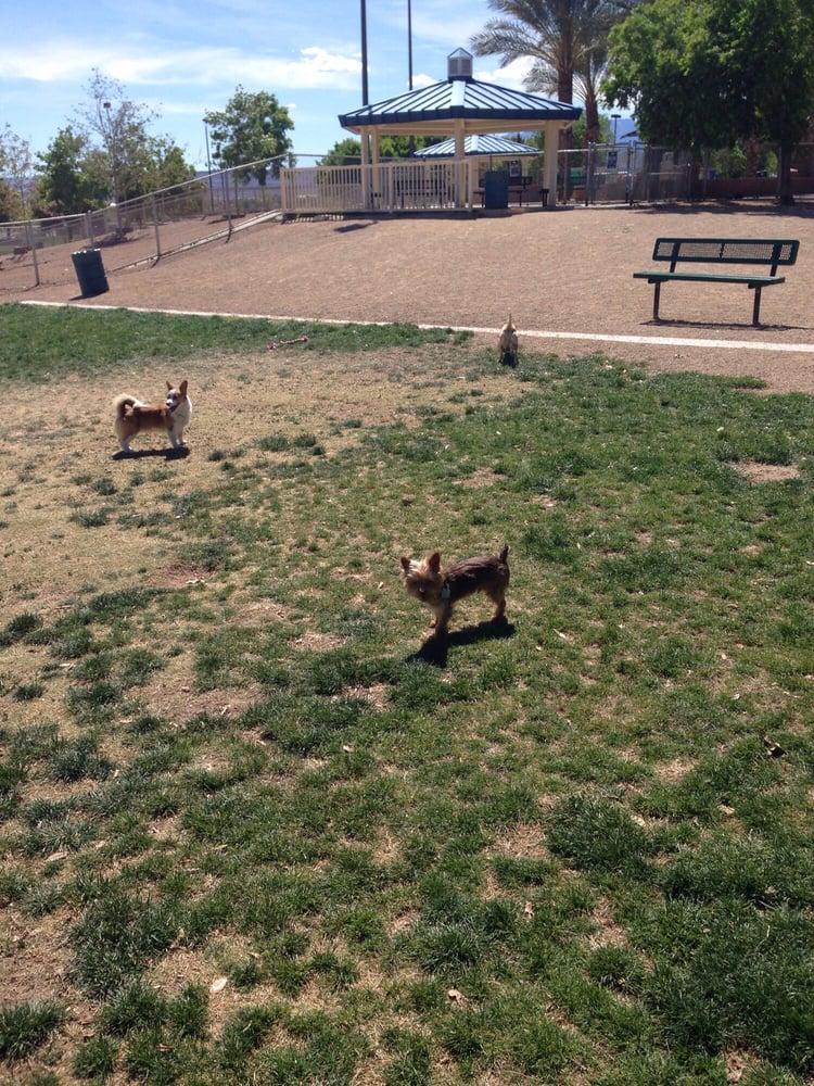 Desert Breeze Dog Park