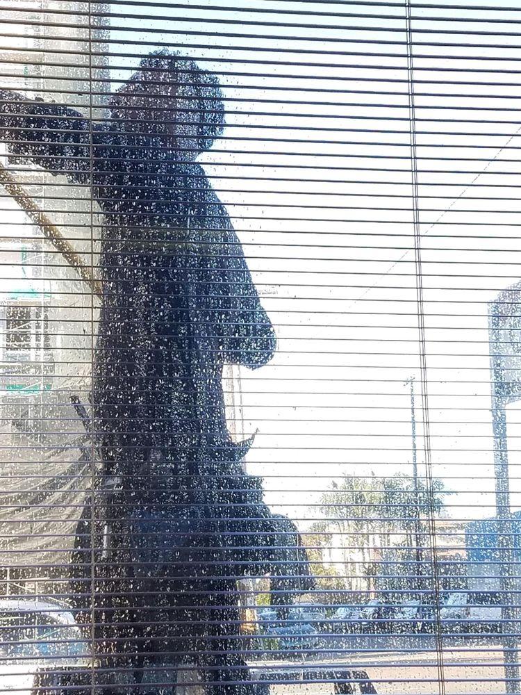 Signature Shine Window Cleaning: San Diego, CA