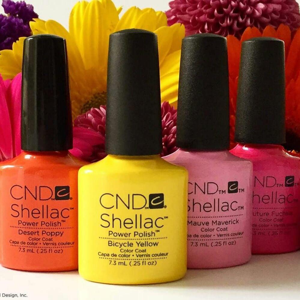 Indigo Nail Creations: 114 Salem Towne Ct, Apex, NC