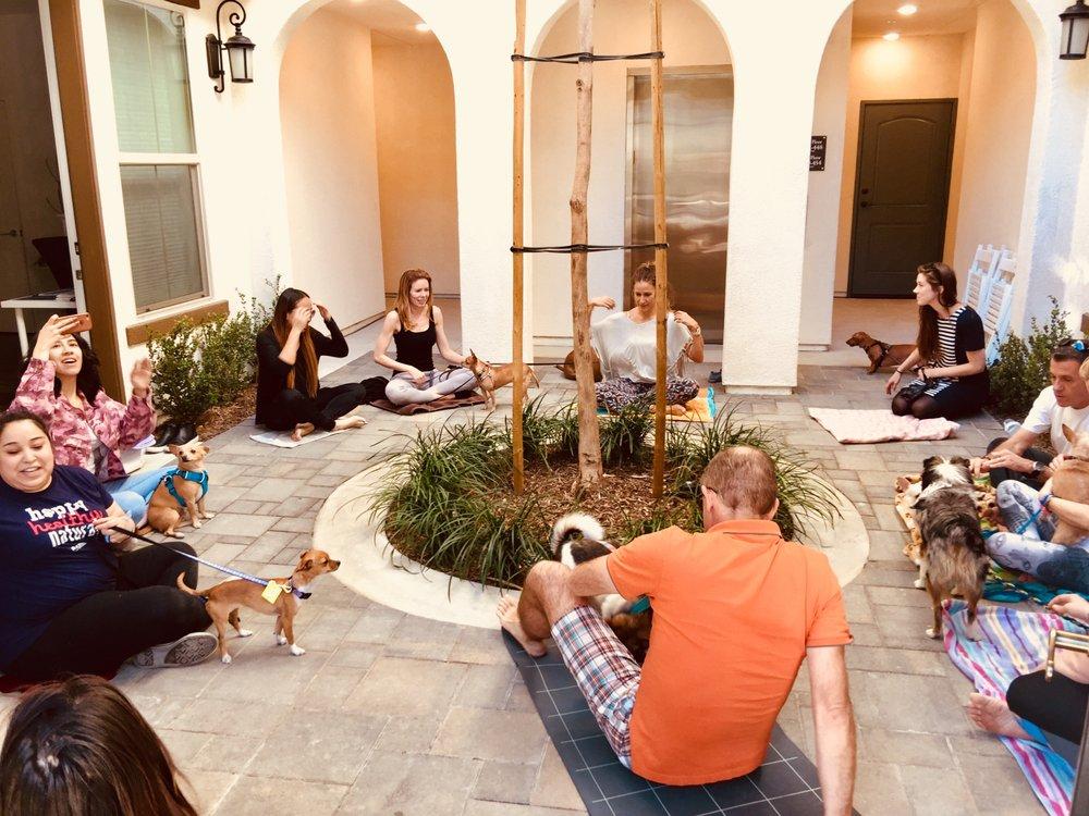 Zenfinite Meditation Lounge: La Crescenta Dr, Brea, CA