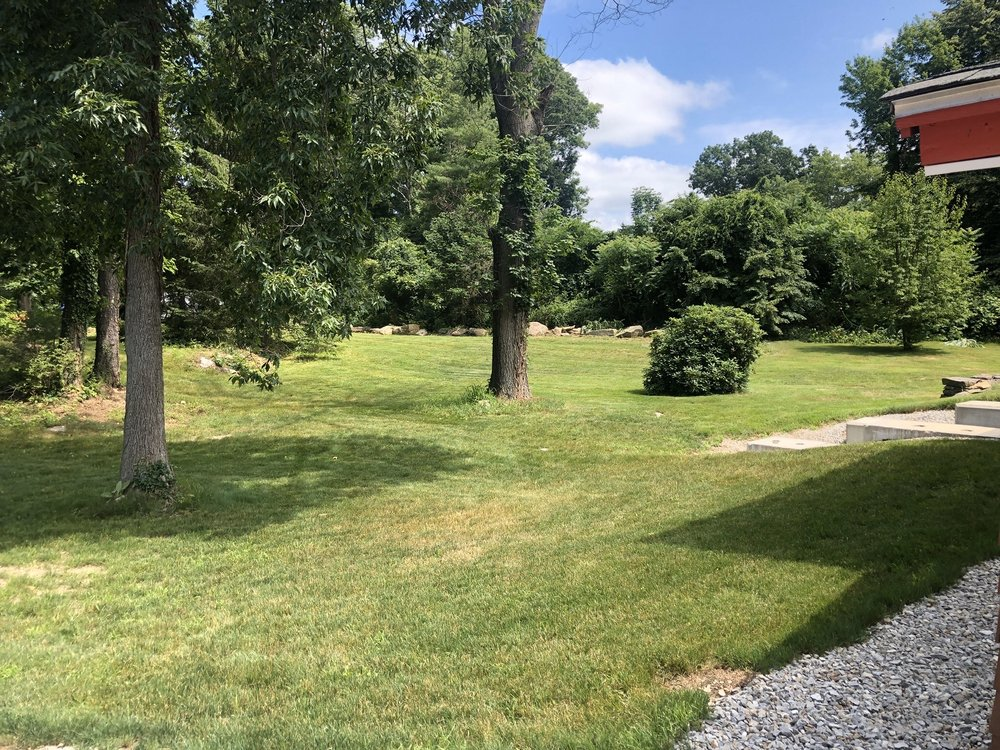 Hayes Tree Care: 16 Long Hill Rd, Brookfield, MA