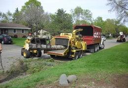 A 1 Bob Sarff Tree Service