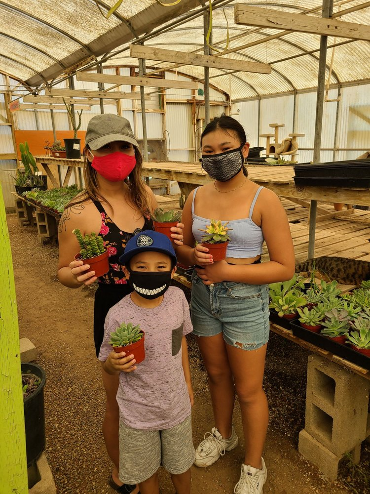 Cactus-Mart: 49889 29 Palms Hwy, Morongo Valley, CA