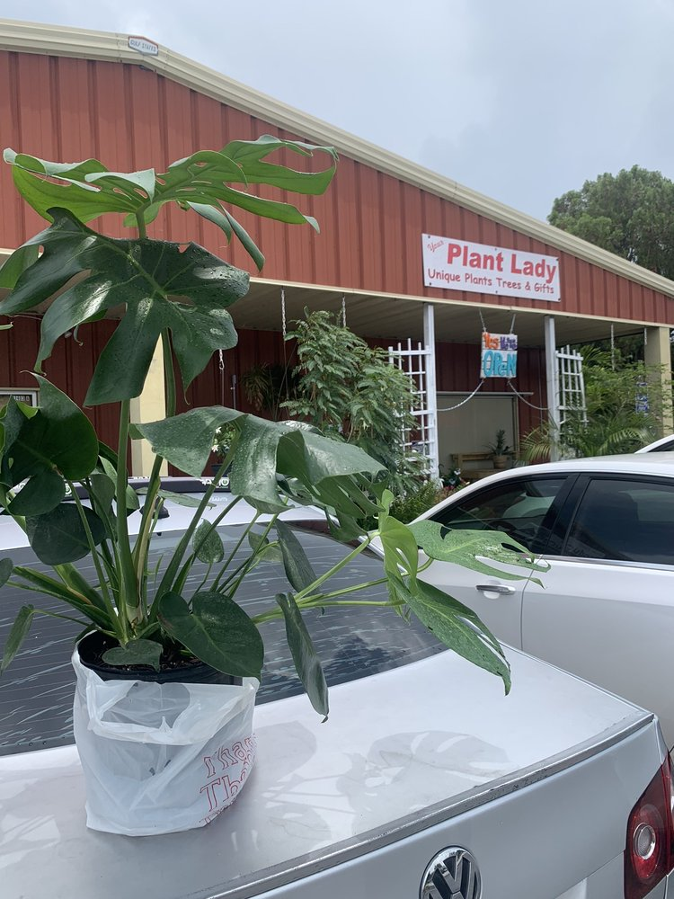 The Plant Lady: 11403 Seminole Blvd, Largo, FL