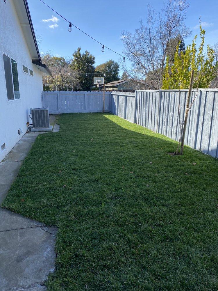 GT Gardening Service: Concord, CA