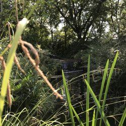 Japanischer Garten 251 Fotos 28 Beiträge Park Grünanlage