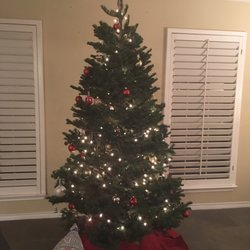 photo of pattons christmas trees decorations by yvette dallas tx united states